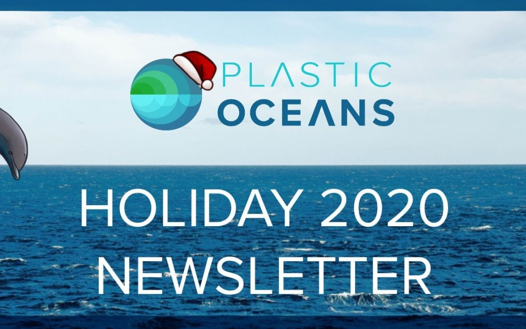 Holiday Newsletter: Upcoming Plans & MyPlasticDiary Workshop