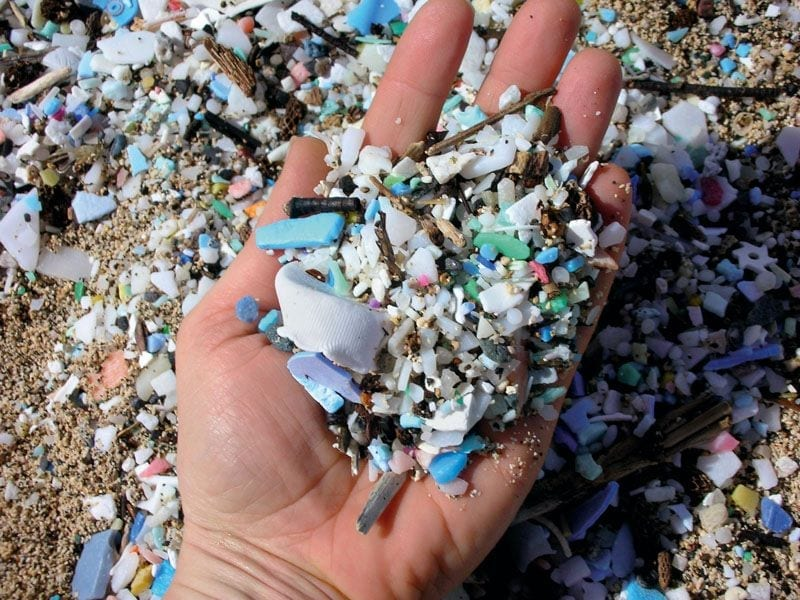Microplastics Are Everywhere, So What Can We Do?